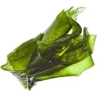 algues verte